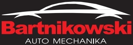 Mechanika Bartnikowski
